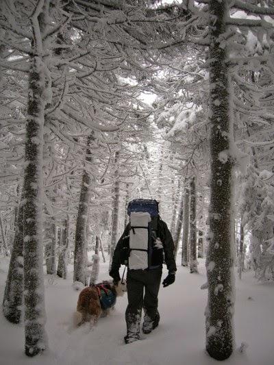 justin+snow
